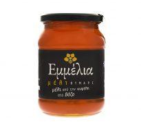μέλι θυμάρι 950γρ